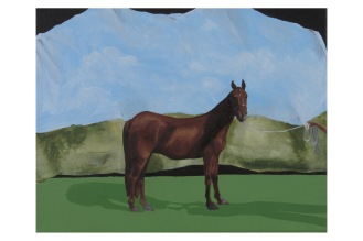 """Pictorial Birthday Wish List Item 3-Horse 